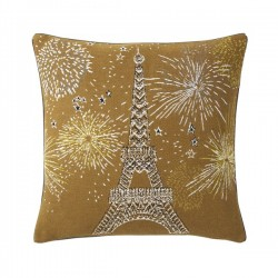 Coussin joie 4545